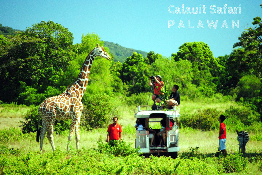 Calauit Game and Preserve Wildlife Sanctuary